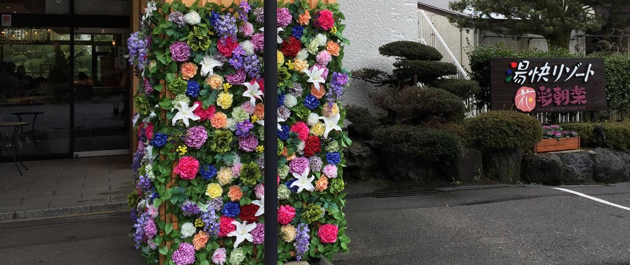 花・彩朝楽